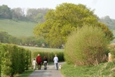 Walking in Hippenscombe